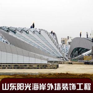 山东阳光海岸海天段工程.jpg