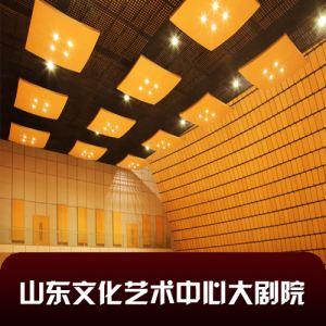 山东文化艺术中心大剧院.jpg